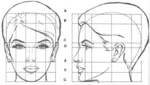 proporciones del rostro femenino frente y perfil
